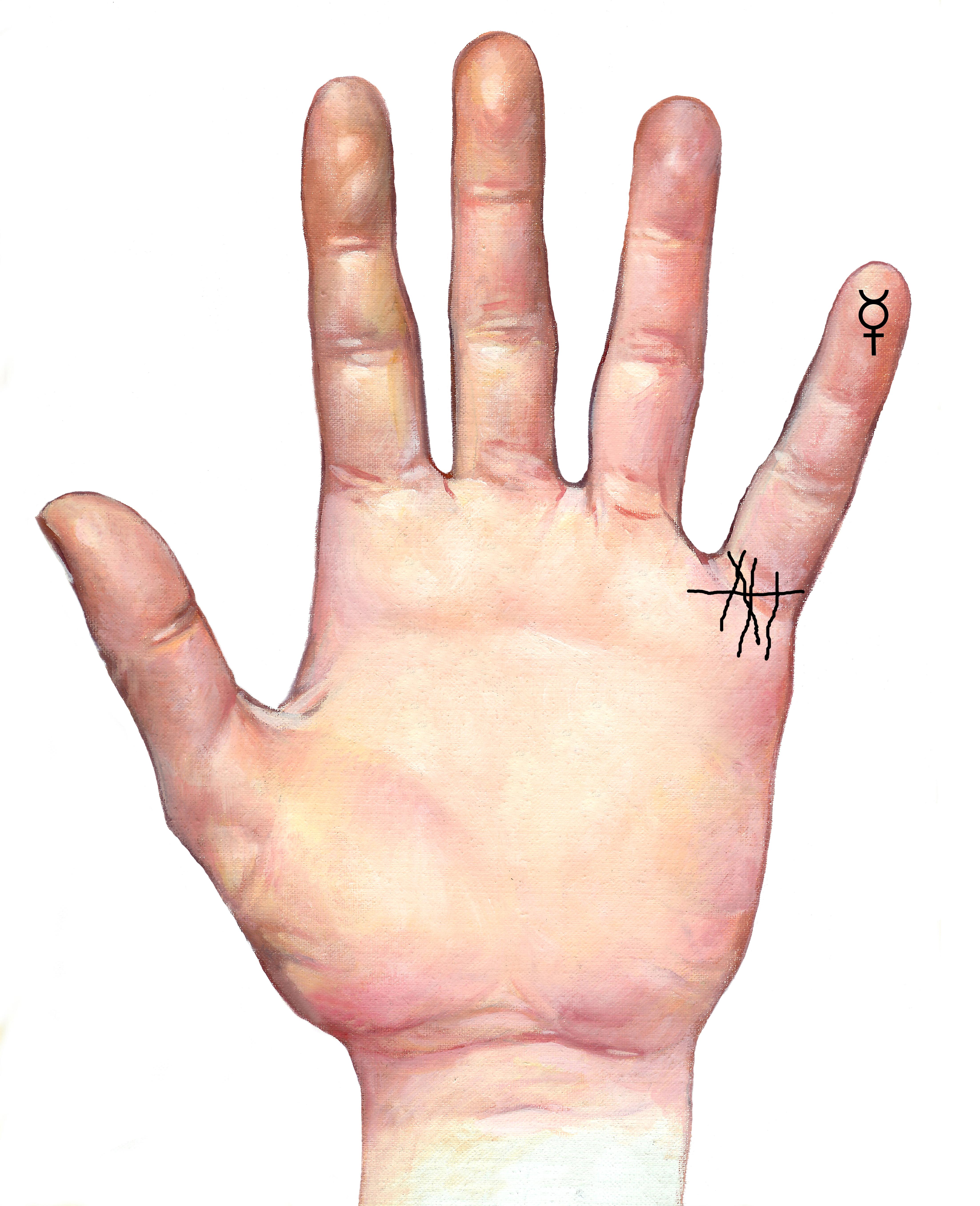 L neas de los hijos quiromancia quiroterapia - Leer la mano hijos ...